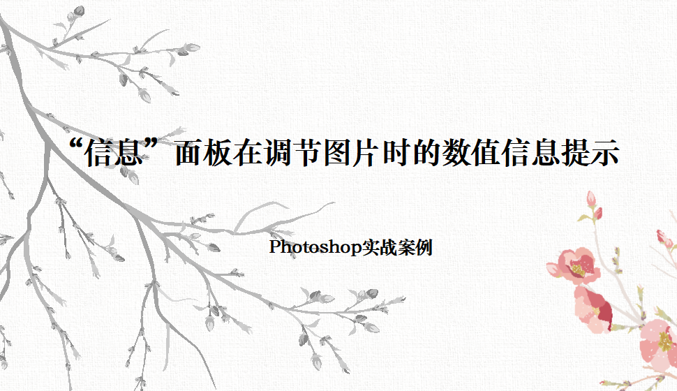 """Photoshop """"信息""""面板在调节图片时的数值信息提示"""