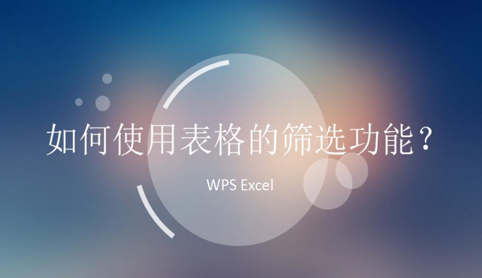 WPS Excel 如何使用表格的筛选功能?